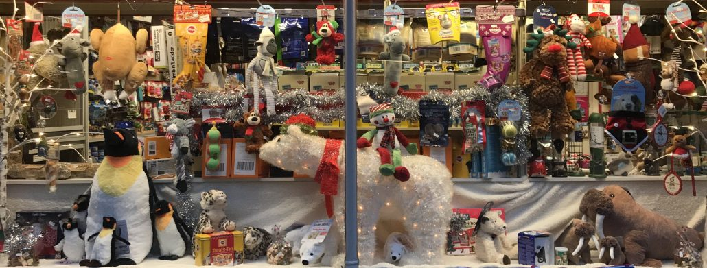 The Christmas Window Display At The Pet Shop Ripon Pet Shops Ripon The Pet Shop Ripon North Yorkshire