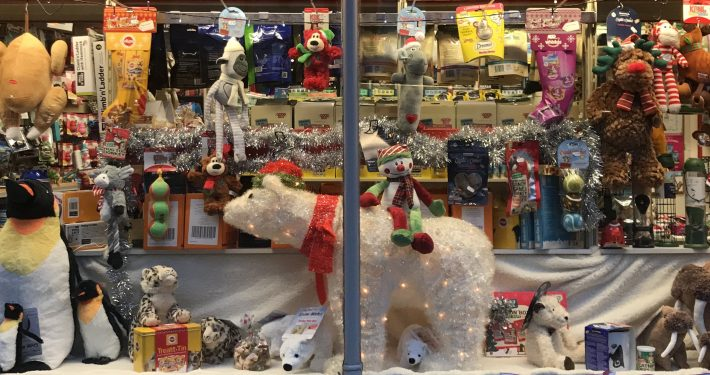 The Christmas window at The Pet Shop Ripon