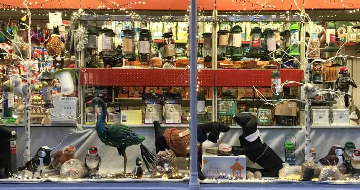 Ripon Pet Shop window display