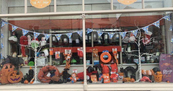 Autumn window at The Pet Shop Ripon