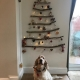 Archie showing off our homemade Christmas tree