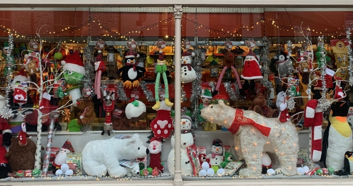The Pet Shop Ripon Christmas Window