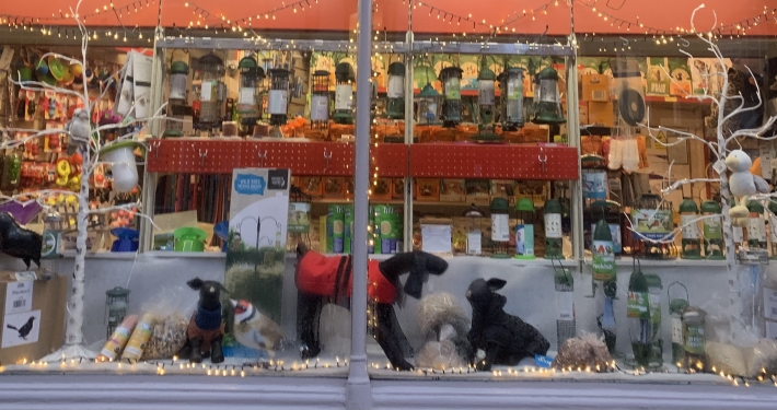Pet Shop Ripon window display