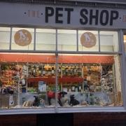 The Pet Shop Ripon
